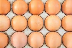 Uova del pollo in cartone II dell'uovo Fotografie Stock Libere da Diritti