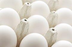 Uova del pollo in casella Fotografie Stock