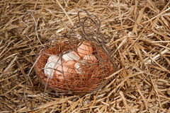 Uova del pollo in cestino in paglia Fotografia Stock Libera da Diritti
