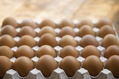 Uova del pollo in contenitore di cartone dell'uovo, primo piano per il concetto crudo fotografie stock libere da diritti