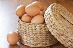 Uova del pollo del Brown Fotografia Stock Libera da Diritti