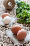 Uova del pollo, mazzo di prezzemolo e cordicella Fotografie Stock Libere da Diritti