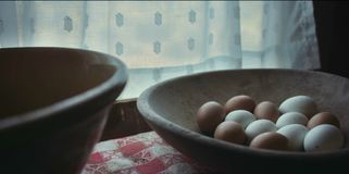 Uova del pollo nel carro armato fotografia stock