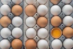 Uova del pollo nel vassoio dell'uovo delle cellule Fotografia Stock