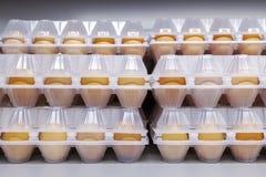 Uova del pollo nell'imballaggio di plastica Front View fotografia stock libera da diritti