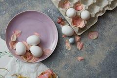 Uova del pollo su una zolla Immagine Stock