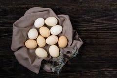Uova del pollo in un nido degli asciugamani Immagini Stock