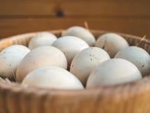 Uova del pollo in una ciotola Immagine Stock