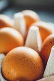 Uova del pollo in vassoio dell'uovo Fotografia Stock