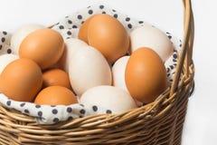 Uova dell'anatra e del pollo Fotografie Stock Libere da Diritti