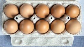 Uova dell'imballaggio in una cima della scatola di cartone Immagini Stock