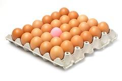 Uova dell'uovo e del pollo di secolo Fotografia Stock Libera da Diritti