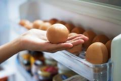 Uova della scelta dal frigorifero Fotografia Stock