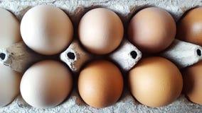 Uova delle tonalità differenti in un substrato del cartone La vista dalla parte superiore Il colore naturale delle uova Preparazi fotografia stock libera da diritti
