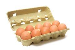 Uova di Brown in casella immagini stock libere da diritti
