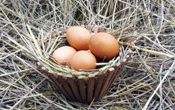 Uova di Brown in ciotola di legno Immagine Stock