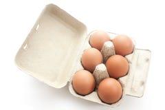 Uova di Brown in imballaggio per le uova Immagini Stock Libere da Diritti