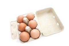 Uova di Brown in imballaggio per le uova Fotografia Stock