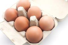 Uova di Brown in imballaggio per le uova Fotografia Stock Libera da Diritti