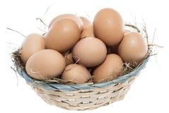 Uova di Brown isolate su bianco Immagini Stock Libere da Diritti