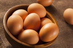 Uova di Brown libere della gabbia organica Fotografie Stock Libere da Diritti