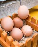Uova di Brown nel canestro di legno Immagine Stock