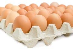 Uova di Brown nel primo piano del vassoio dell'uovo Fotografie Stock