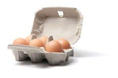 Uova di Brown sulla scatola Immagini Stock