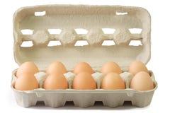 Uova di Brown in un cartone Immagine Stock