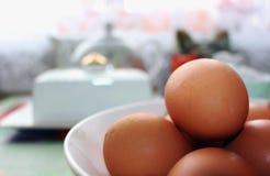Uova di Brown in una ciotola bianca Fotografia Stock
