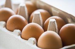 Uova di Chiken imballate in una scatola Immagine Stock Libera da Diritti