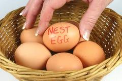 Uova di nido Fotografia Stock Libera da Diritti