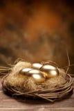 Uova di nido dorate Fotografia Stock Libera da Diritti