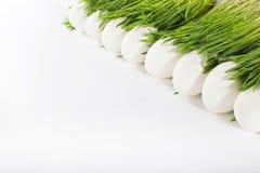Uova di Pasqua bianche nell'erba Immagine Stock Libera da Diritti