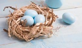 Uova di Pasqua blu in nido su fondo di legno immagini stock
