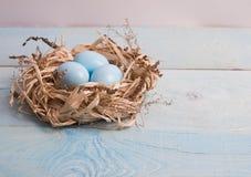 Uova di Pasqua blu in nido su fondo di legno immagine stock