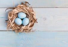 Uova di Pasqua blu in nido su fondo di legno fotografia stock libera da diritti