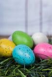 Uova di Pasqua Che si siedono sull'erba Immagini Stock