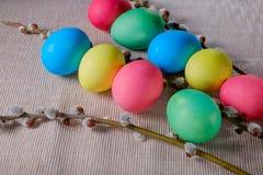 Uova di Pasqua colorate con i ramoscelli del salice Fotografia Stock
