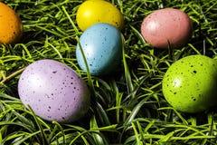 Uova di Pasqua colorate in erba verde Immagini Stock
