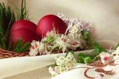 Uova di Pasqua Con differenti fiori Fotografie Stock