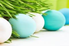 Uova di Pasqua Con erba verde Fotografia Stock Libera da Diritti