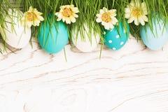 Uova di Pasqua Con erba verde Fotografie Stock