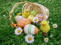 Uova di Pasqua con i polli e le margherite Immagine Stock