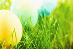 Uova di Pasqua con il sole Fotografie Stock Libere da Diritti