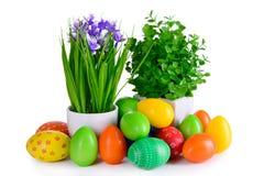 Uova di Pasqua con la cartolina dei fiori Immagine Stock