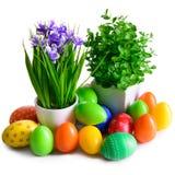 Uova di Pasqua con la cartolina dei fiori Immagine Stock Libera da Diritti
