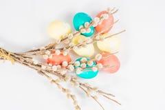 Uova di Pasqua Con un salice Immagine Stock Libera da Diritti
