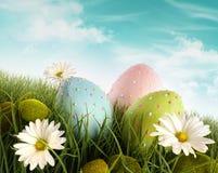 Uova di Pasqua decorate nell'erba con le margherite Immagine Stock