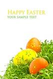 Uova di Pasqua decorative Immagine Stock